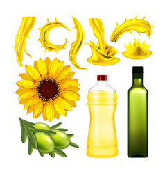 olive and sunflower oil collection set vector image