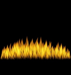 Realistic Fire Flame Isolated vector image