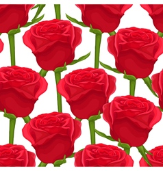Seamless background with red roses on white vector