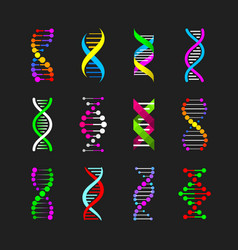color dna genetic signs set vector image vector image