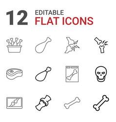 Bone icons vector