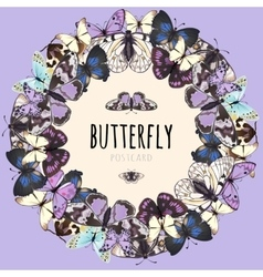 Butterflies set space for text on pink background vector image