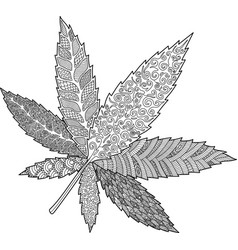 coloring book page with decorative cannabis leaf vector image