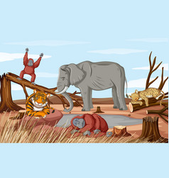 Deforestation scene with dying animals in drought vector