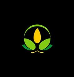 Flower beauty spa lotus bio logo vector