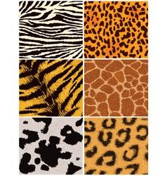 Fur texture vector