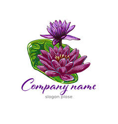 lotus logolotus flower logobeauty logofashion vector image