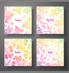 Set of colorful botanical cards with berries vector