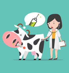 Sick cow swine flu with doctor a vaccination vector