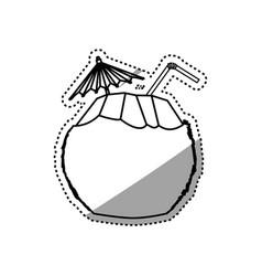 coconut beverage beach drink vector image