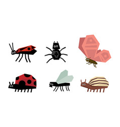 geometric insects set spider bug ladybug vector image