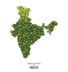Green leaf map of india of a forest vector