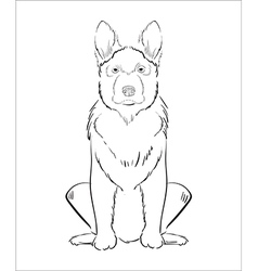 hand drawn dog vector image