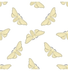 Seamless pattern with butterfly Bombyx mori vector
