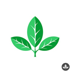 Three green leaves flat logo template vector image