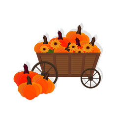 pumpkins in a wooden cart flat style vector image vector image