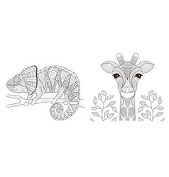 chameleon and giraffe vector image