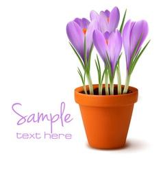 fresh spring flowers easter background vector image
