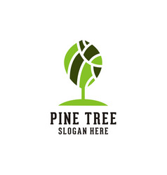 pine tree logo vector image