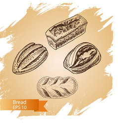 Sketch - bakery bread loaf vector