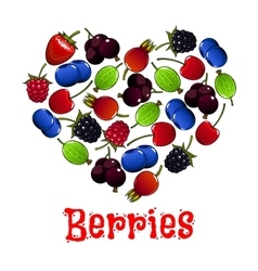 Berries heart shape symbol vector image