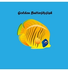 Golden Butterfly fish vector image vector image