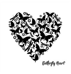 black heart butterflies valentine card vector image