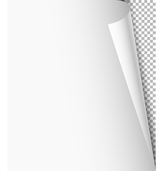 Blank paper sheet with bending corner on vector