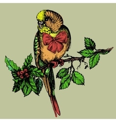 Parakeet with bow and mistletoe sitting on brunch vector image