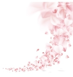 Sakura flying petals eps 10 vector