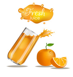 splashes glass orange vector image
