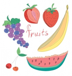 set of hand drawn fruits vector image vector image