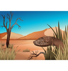 A snake at the desert vector
