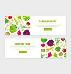 banners with a pattern vegetables and herbs vector image
