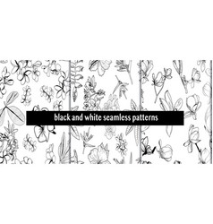Set seamless pattern with hand drawn tropical vector