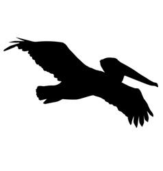 Silhouette of pelican vector