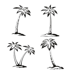 Palm Trees Black Pictograms vector image