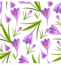 purple crocuses in the snow pattern vector image