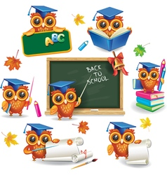 Set of wise owls in graduation caps vector image vector image