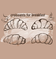 hand drawn beautiful croissant vector image