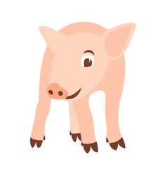 pig flat style front vector image