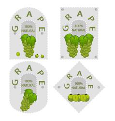 the grape vector image