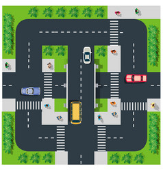 top view road vector image