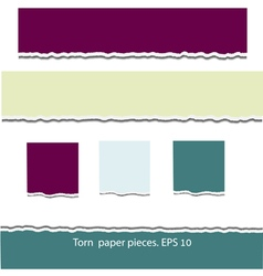 Torn paper pieces vector image