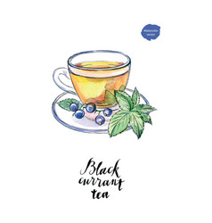Watercolor glass cup of black currant tea vector