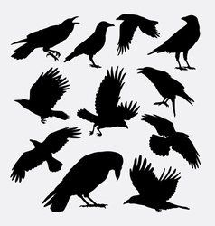 Crow bird poultry animal silhouette vector image vector image