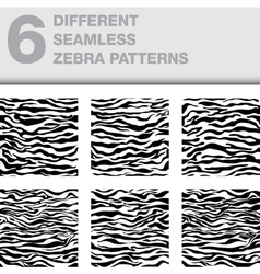 set of 6 zebra seamless textures as a backgrounds vector image vector image