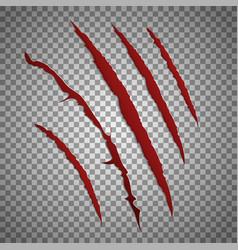 Slash scratch set on transparent background vector image