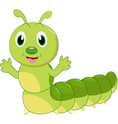 cute caterpillar cartoon vector image