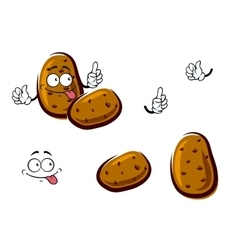 Fresh brown potato cartoon vegetables vector image